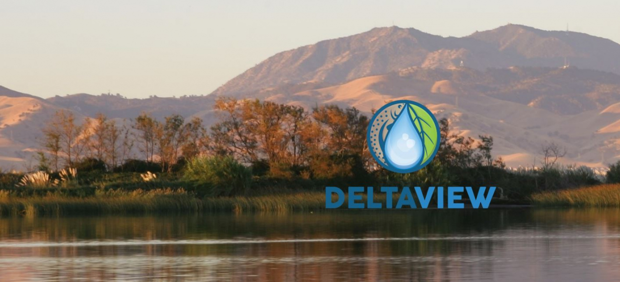 Delta View South Toward Mount Diablo
