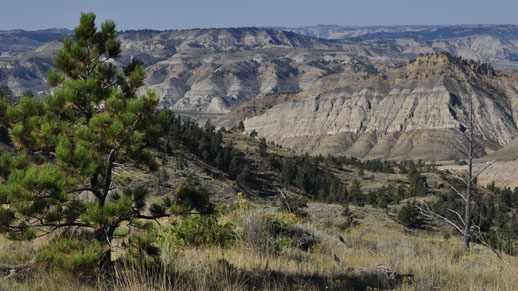 The rugged landscape of the upper missouri river breaks