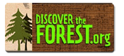 discover-the-forest-image