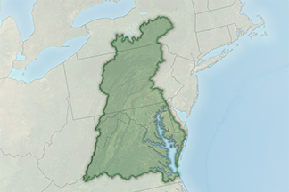 The Chesapeake Bay Watershed: Still Cloudy, With a Chance of Clearing