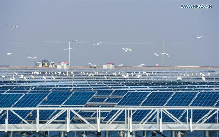 solar-fishery-8