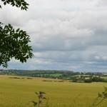 Gorgeous view near Newmarket
