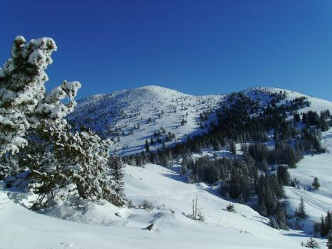 Loomis NRCA is a wonderland of winter activities.