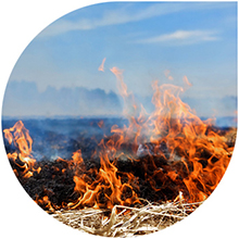 Image of fire burning grass