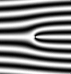 neutron hologram