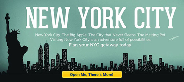 What is in new york city