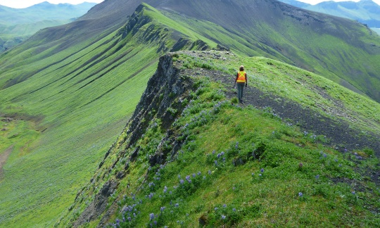 A woman in a safety vest walks towards a high hill on the edge of a jagged ridge.