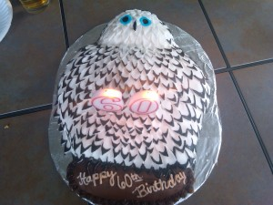 My Dad's 60th birthday owl cake