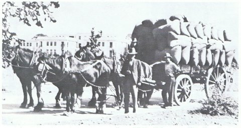 Iron-tyred horse drawn waggom