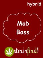 mobboss