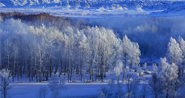 Picturesque winter scenery in Xinjiang