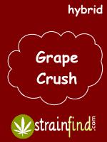 HYBRIDgrapecrush
