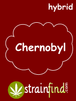 hybridchernobyl