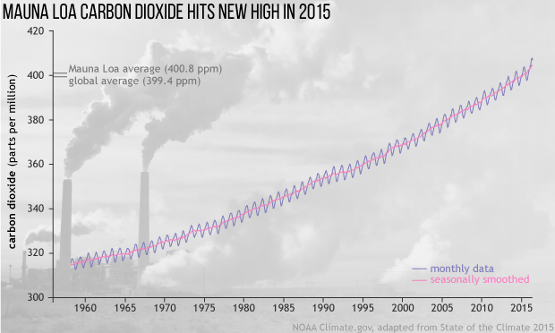 2015 State of the Climate: Carbon Dioxide
