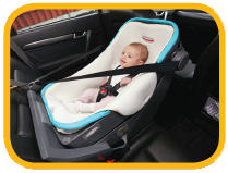 Rear Facing Child Restraint