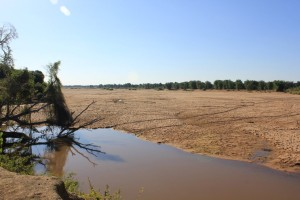 On the banks of the Limpopo River