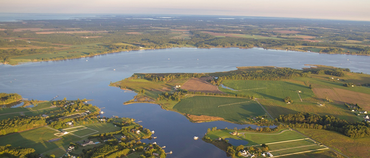 Choptank Ecological Assessment: Digital Atlas Now Available