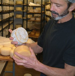 Cheese Spotlight: Bleu Mont Bandaged Cheddar