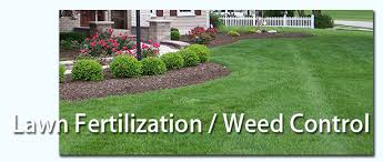 Weed Control and Lawn Treatment Services