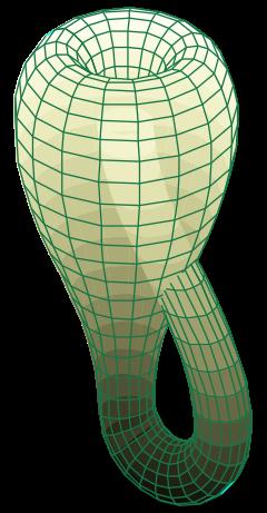 Klein şişesi de başka bir iki boyutlu örnektir. Burada hiçbir yön vektörü tutarlı bir şekilde tanımlanamaz. Eğer bir yol seçip takip ederseniz sizi baş aşağı farklı bir yerde çıkartır.