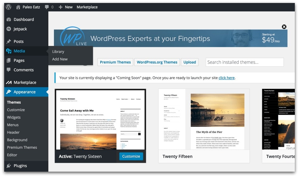 wordpress choose a theme for your new blog