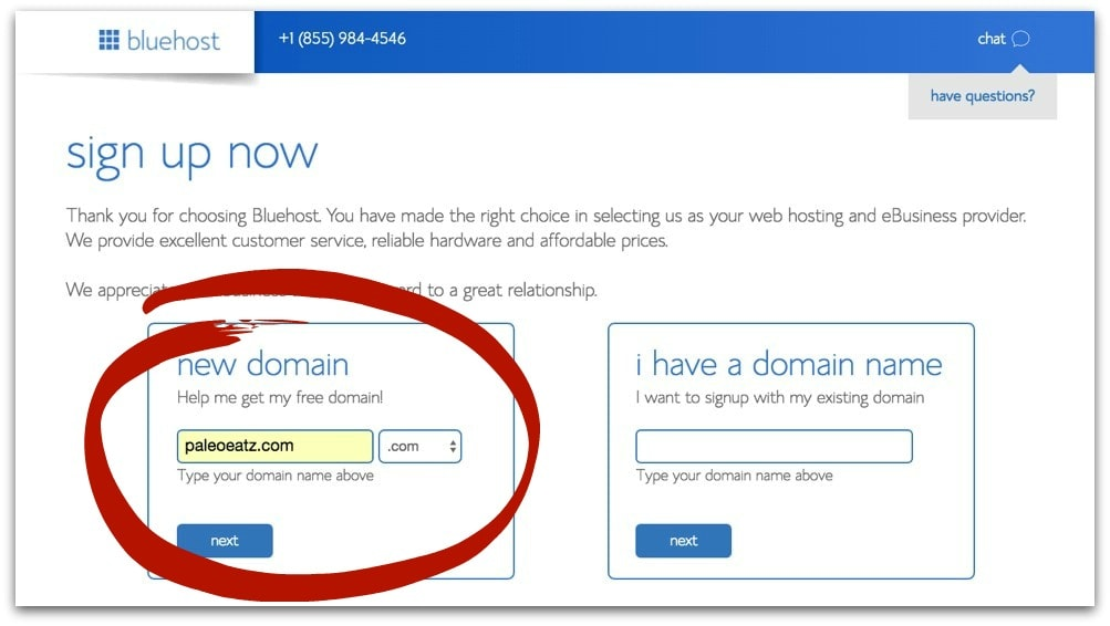 new domain name bluehost