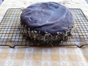 Chocolate covered yogurt and coconut cakes