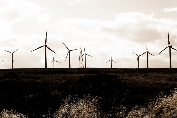 Birds and Turbines: Designing Offshore Wind-farms to Prevent Bird-strikes