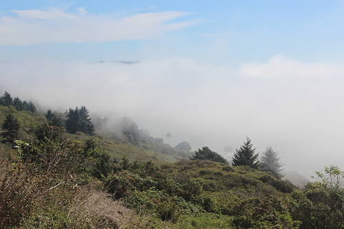 Fog on the cliffs over the ocean, near Crescent City