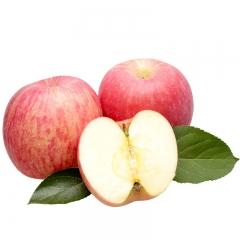 山西芮城冰糖心富士 苹果 自家果园 自产自销 无染色打蜡催收 现摘现卖 地下水浇灌