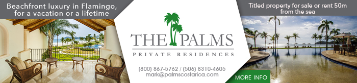 the-palms-final