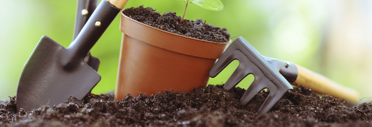 Organic growing advice