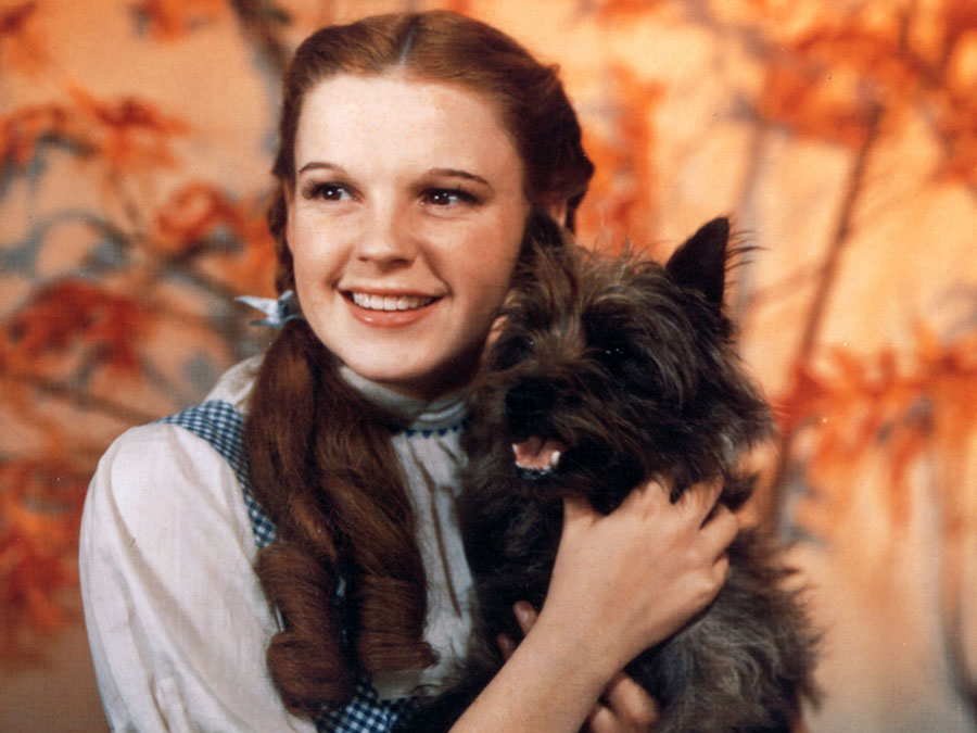 Judy Garland as Dorothy Gale in The Wizard of Oz (1939).