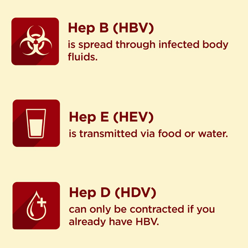 Hepatitis C Facts