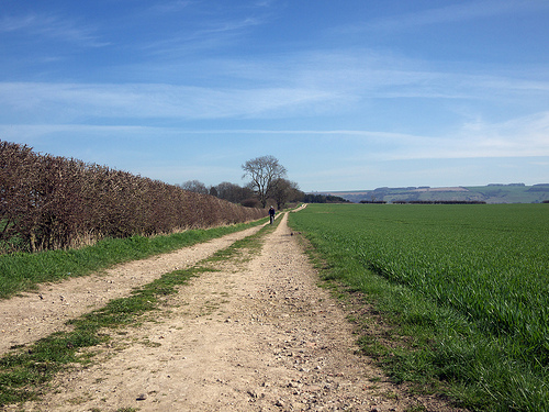wolds-march2012-1