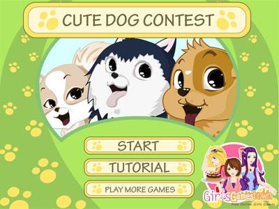 小狗选美大赛