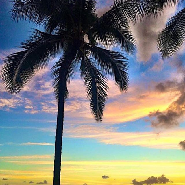 Beach please ✈🌴 Hawaii is spectacular for so many reasons but mostly it's endless beauty 😚 #Waikiki #Hawaii #Oahu #sunset #sunsets #beach #RediscoverDiplomat