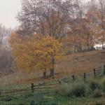 kasnojesenski pejzaž