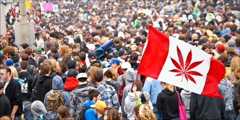 The 2017 Global 2 Join The 2017 Global Marijuana March Weekend Around The World
