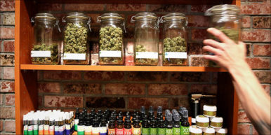 10 Things You heronewnew 386x193 Join The 2017 Global Marijuana March Weekend Around The World