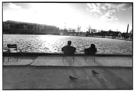 2 pigeons4