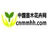 中国苗木花卉网