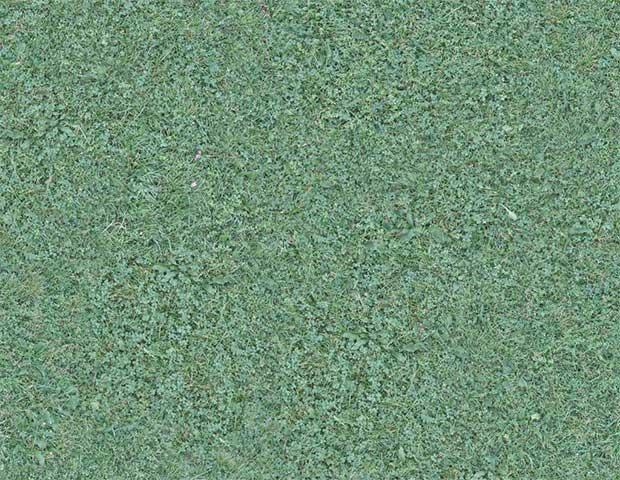 seamless-grass-texture-free-download
