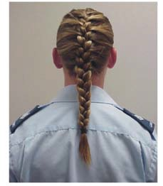 dress-hair-braid