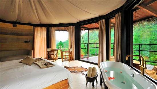 森林里的酒店还是酒店里的森林