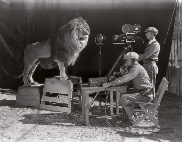 filming of the MGM lion