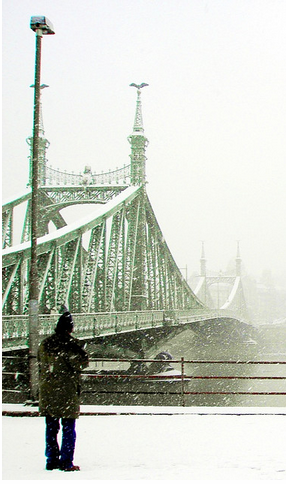Liberty Bridge - Budapest winter