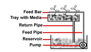 Top feed hydroponic method