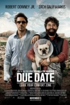 Image of Due Date