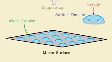 As Condensation Droplets Form and Combine, What Forces are at Work?